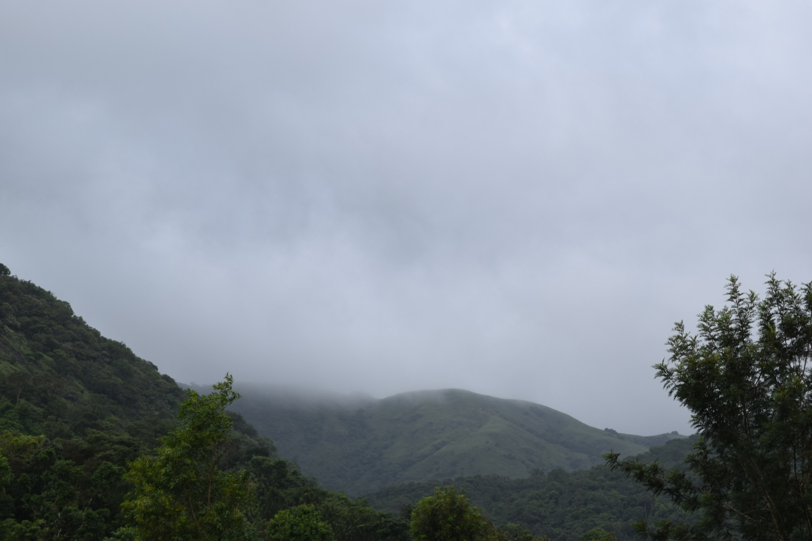 Scenic View of mountains in Coorg