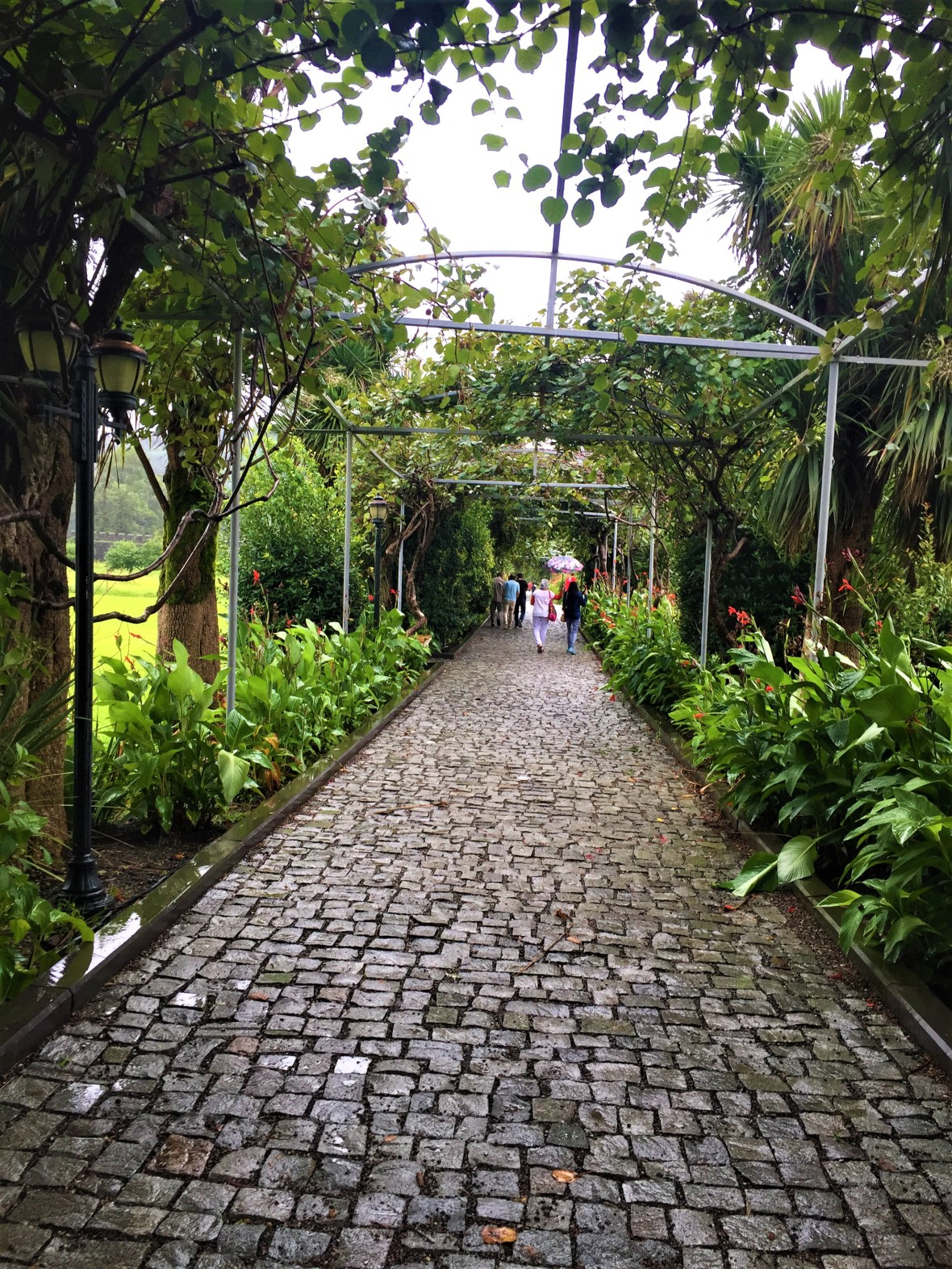 Pathway from the Gate towards the main area